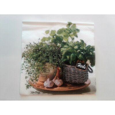 zöldfűszeres papírszalvéta